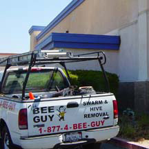 Culver City Bee Removal Guys Service Truck